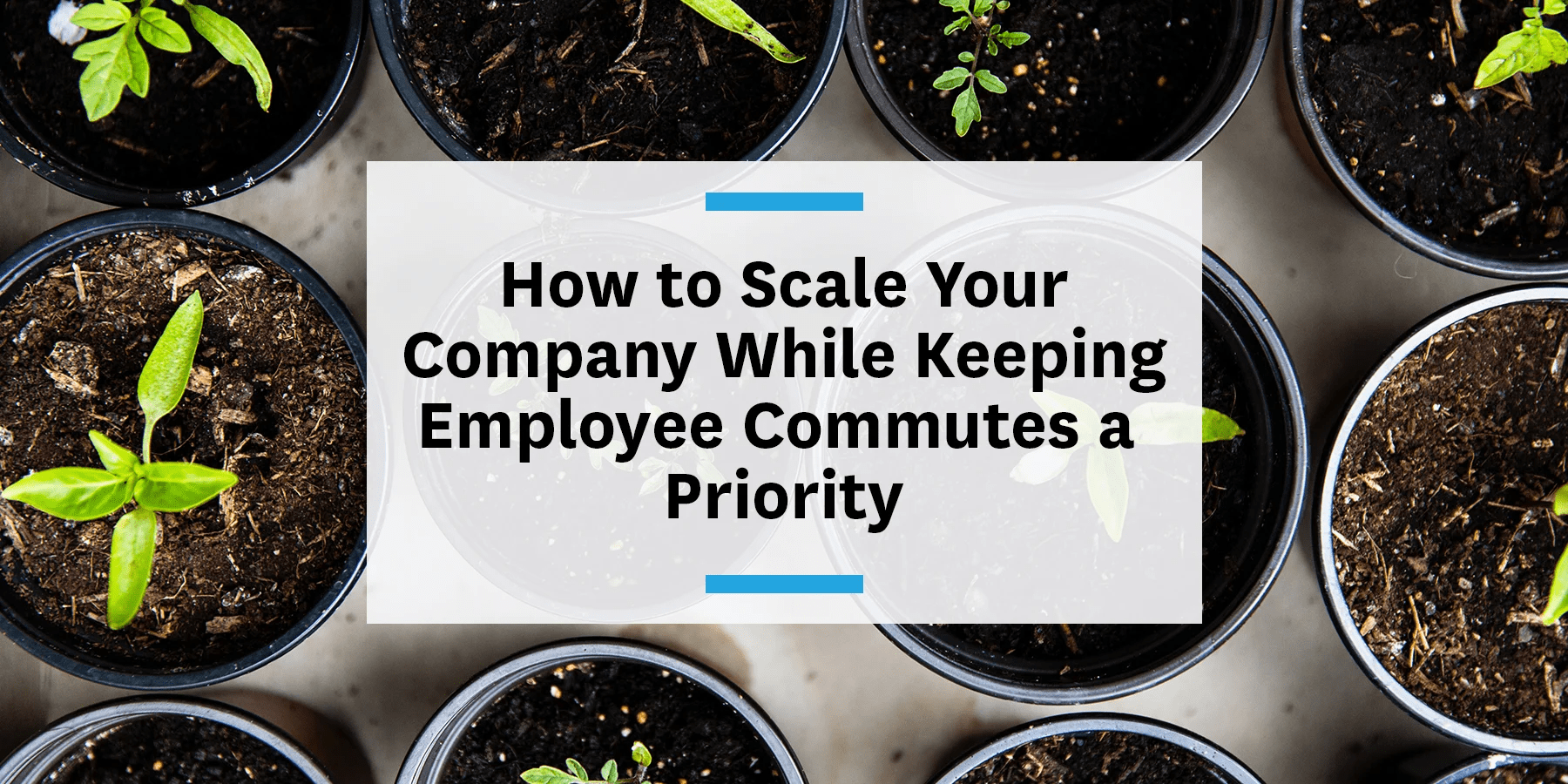 Feature image for scaling your company and keeping employee commutes a priority