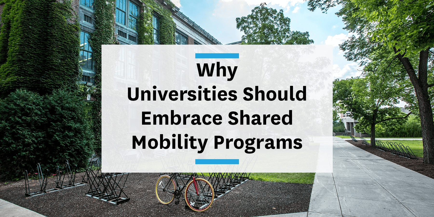 Feature image for universities embracing mobility programs
