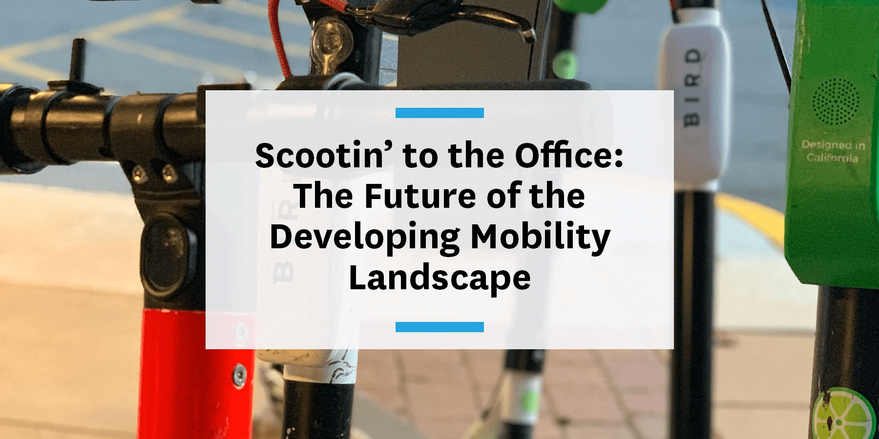 Feature image for the future of mobility landscape